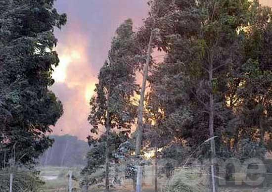 """Claromecó: """"El fuego está controlado y esperamos lluvia"""""""