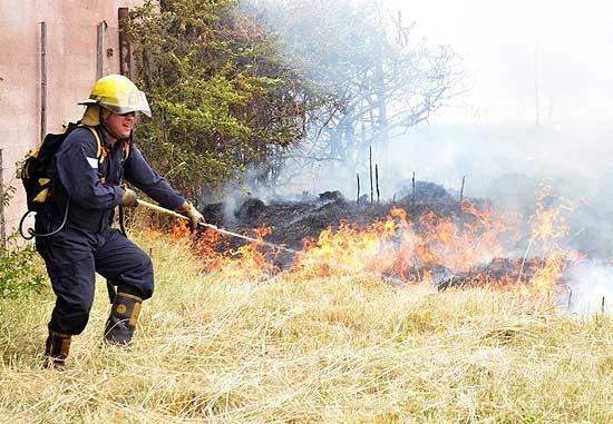 Incendio de rastrojos afectó elementos en un campo