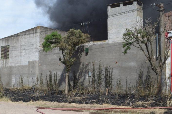 Se registraron varios incendios en el arranque del 2016