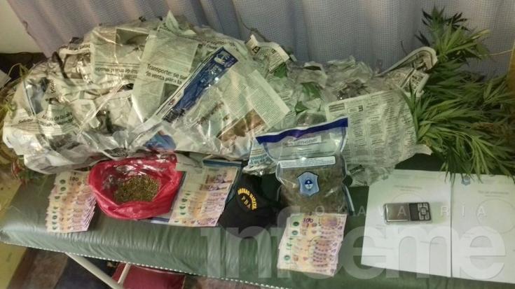 Secuestraron plantas de marihuana y dinero en un allanamiento