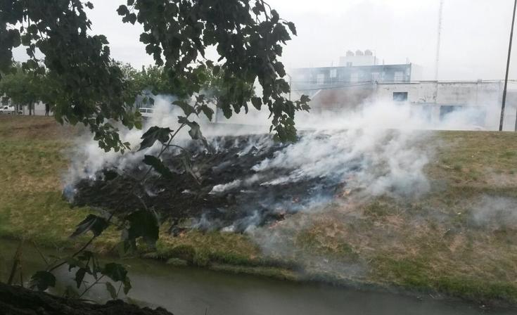 Bomberos trabajaron por incendio en la barranca del arroyo