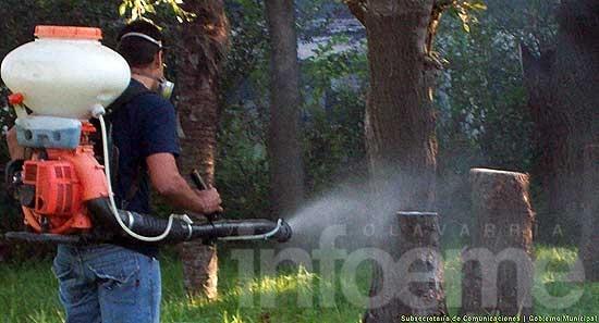 Dengue: controles y fumigación en cementerios