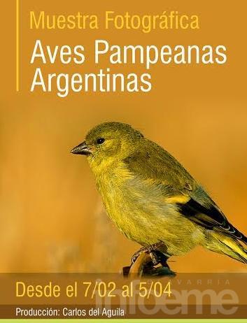 "Inaugura la muestra fotográfica ""Aves Pampeanas Argentinas"""