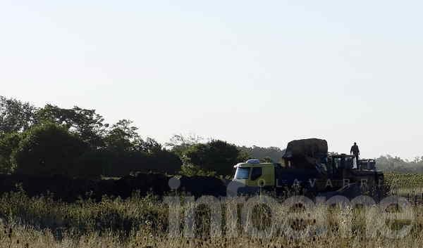 Detectan otra sobrecarga de camiones
