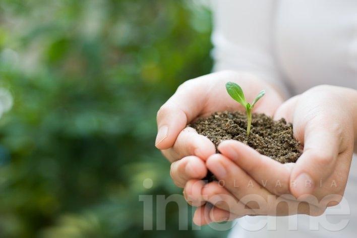 """Reciclar y educar sobre medioambiente, los desafíos para una """"Olavarría Verde"""""""