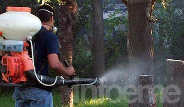 Hallaron larvas del mosquito transmisor del dengue en barrio Luján