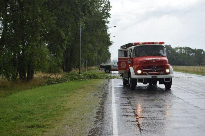Una rama cayó a la autopista Fortabat  por la tormenta