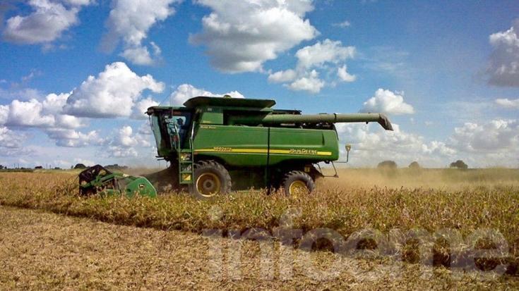 Sube el dólar y las cerealeras comienzan a desprenderse de más divisas
