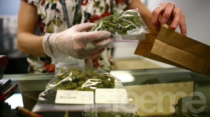 La Justicia autorizó el aceite de cannabis a una beba con convulsiones