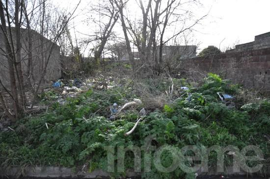 Proponen que municipios usen terrenos abandonados para el programa Procrear