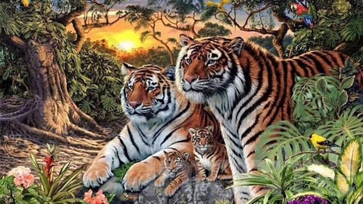 A jugar! Mucho más que tres tigres