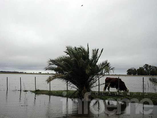 Preocupación en la zona rural por las intensas lluvias