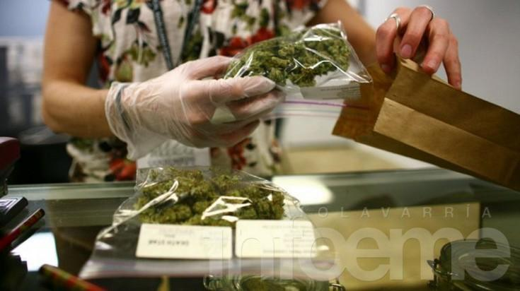 Bajamón busca adherir al proyecto de uso medicinal de la marihuana de La Madrid