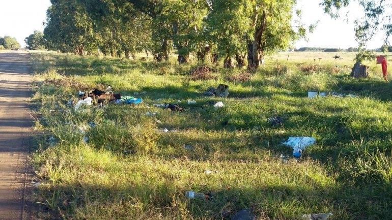 "Aramburu: ""no queremos perder la marca registrada de ser una ciudad limpia"""
