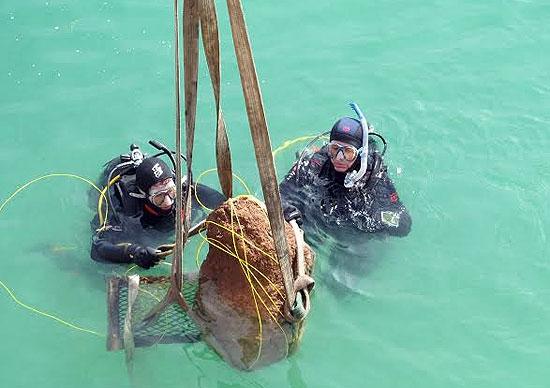 Rescatan fósil de 3 millones de años sumergido en una cantera