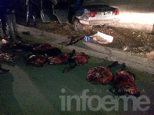 En persecución, detienen un auto que llevaba carne robada