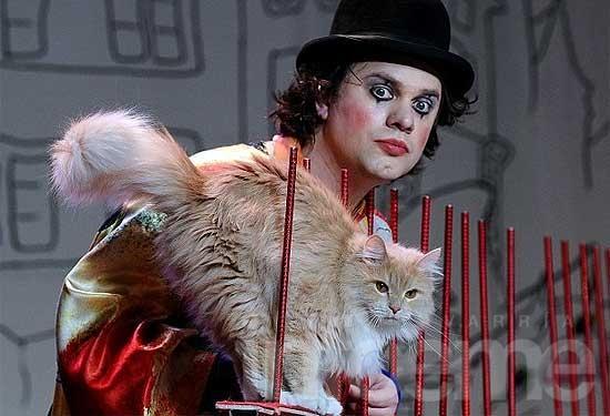 Buscan la prohibición de shows circenses con animales