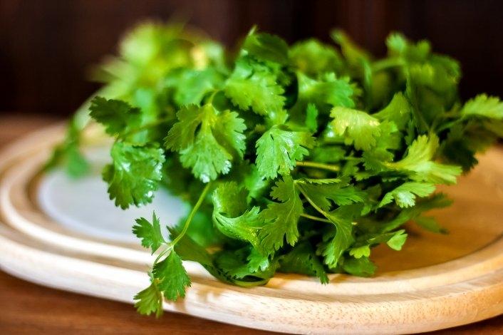 Mientras avanza el cilantro, mejora tu estado de ánimo