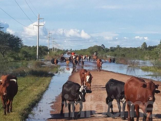 7 distritos bonaerenses lograron la declaración de Emergencia Agropecuaria