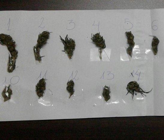 Secuestran armas y marihuana en distintos operativos