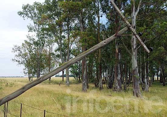 Por los fuertes vientos, la zona rural se quedó sin luz