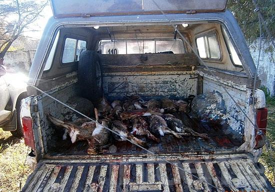 Detectan a cazadores furtivos y secuestran una camioneta