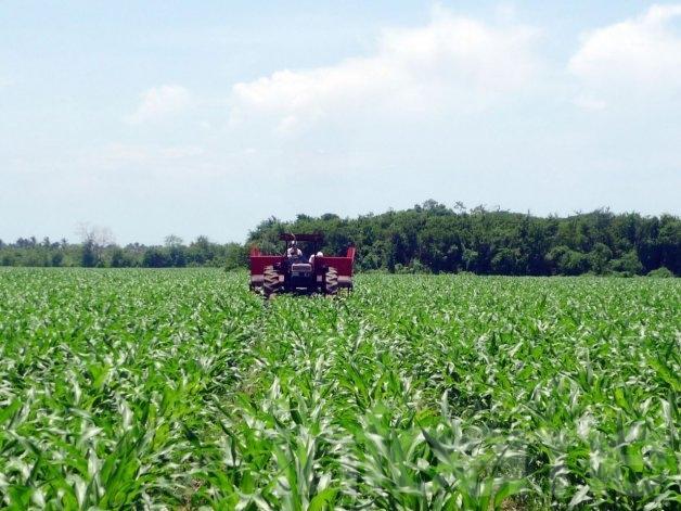 Agropecuarios se preparan para una protesta nacional esta semana