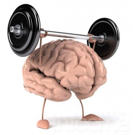 Dale de comer a tu cerebro, cultiva la memoria!