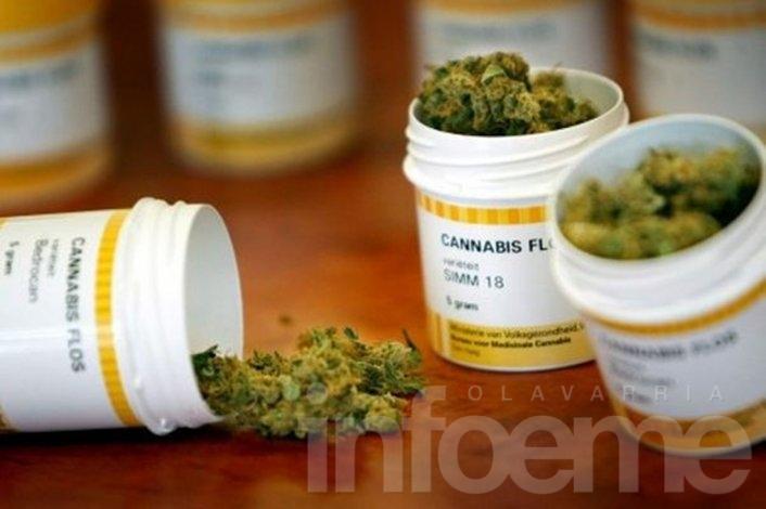 Charla sobre Cannabis medicinal en Biblioteca 1º de Mayo