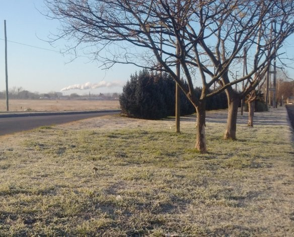 Este domingo fue el día más frío en Olavarría