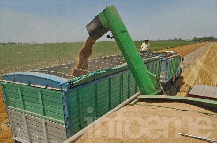Transportistas de cerealeras inician paro por tiempo indeterminado