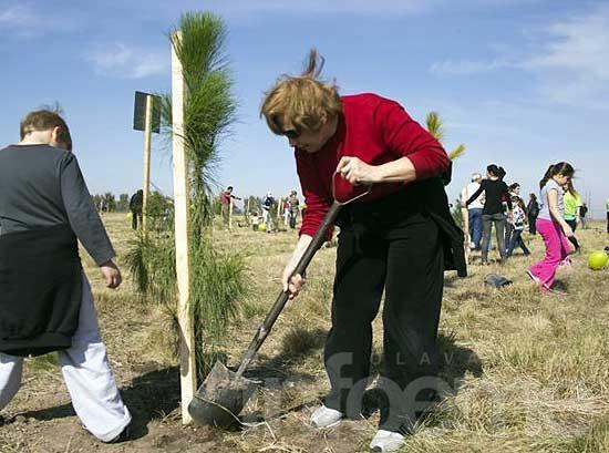 """Hasta el 22 de agosto se encuentra abierta a la inscripción de """"Un Árbol por cada Niño"""""""
