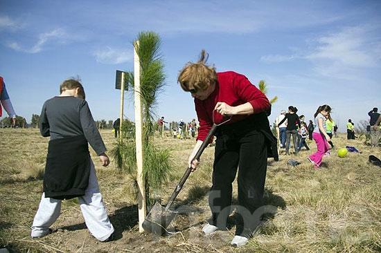 """Este sábado se festeja el Día del Árbol con distintas propuestas en """"La Máxima"""""""