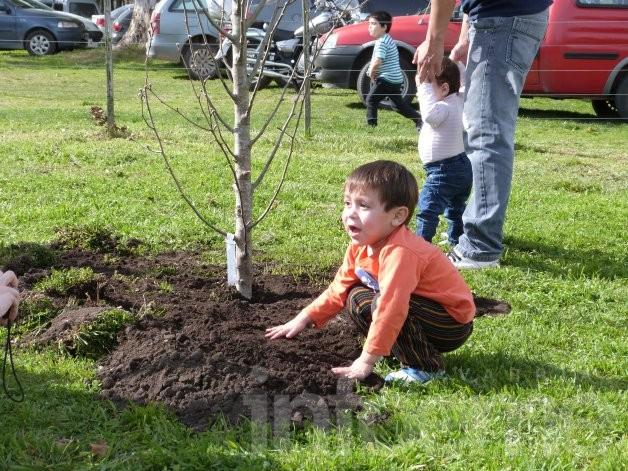 El Parque Cerrito ya tiene 193 nuevos árboles con nombres de niños