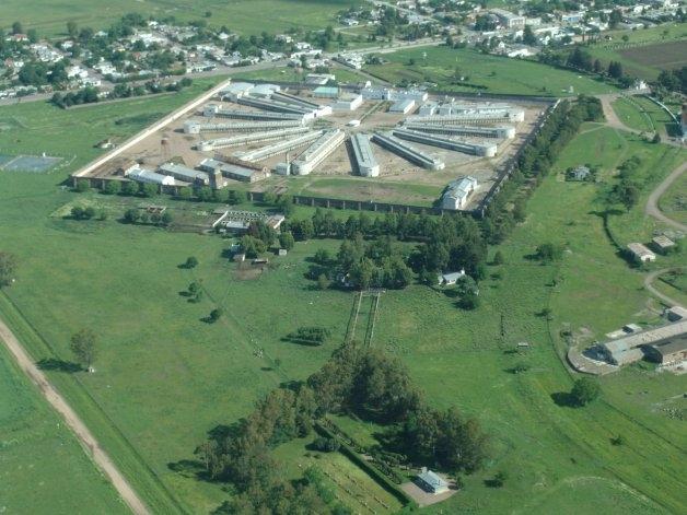 Duro diagnóstico del estado del Servicio Penitenciario Bonaerense