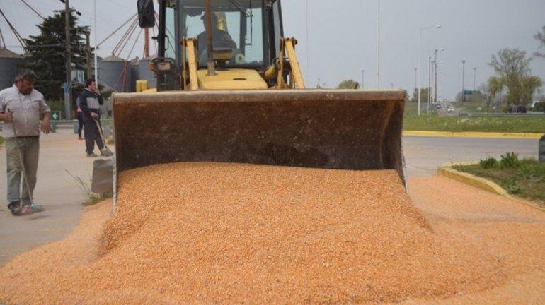 Video: así juntaban las 6 toneladas de maíz derramadas