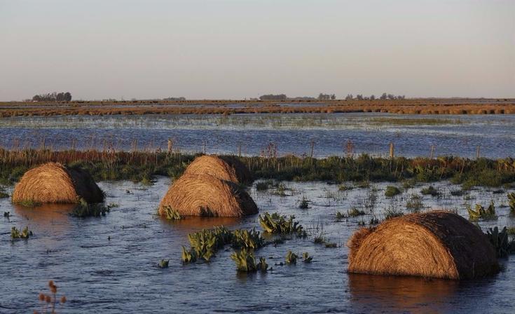 Aseguran que casi toda la Provincia está inundada