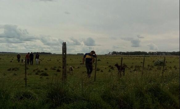 Atrapan a galgueros cazando en un campo: entre ellos dos menores