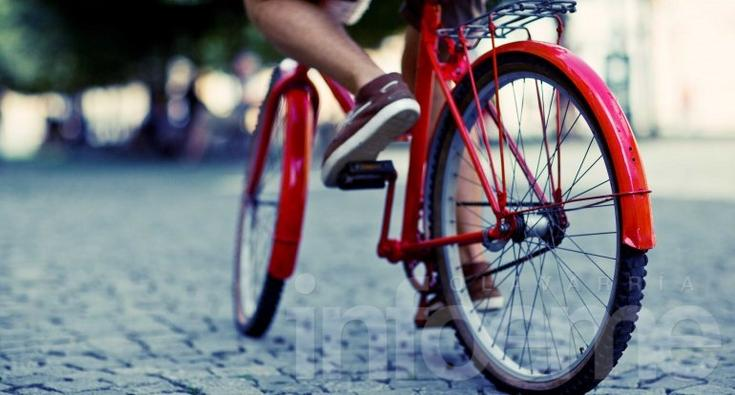 Bicicleta versus colectivo: la regularidad determina al más saludable