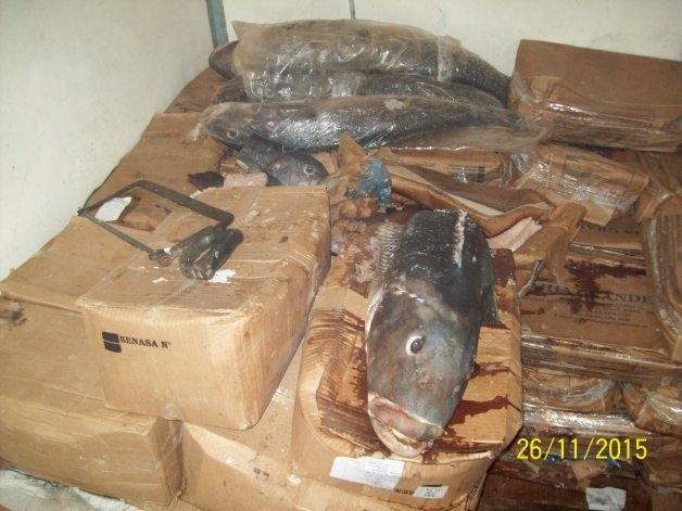 Más de 2.891 kilos de pescados y mariscos en mal estado: estaban a -1.9º C