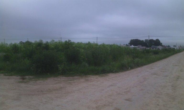 Reclamo por terrenos baldíos del barrio Pickelado