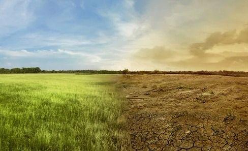Cómo el cambio climático daña la salud de la población mundial