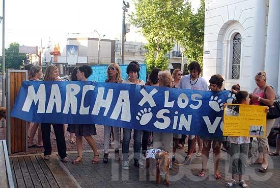 """Marcharon """"contra el maltrato animal en Bromatología"""""""