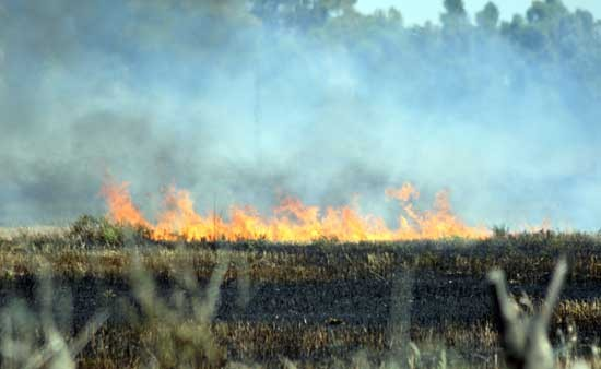 Provincia evaluó incendios rurales de Olavarría y la región