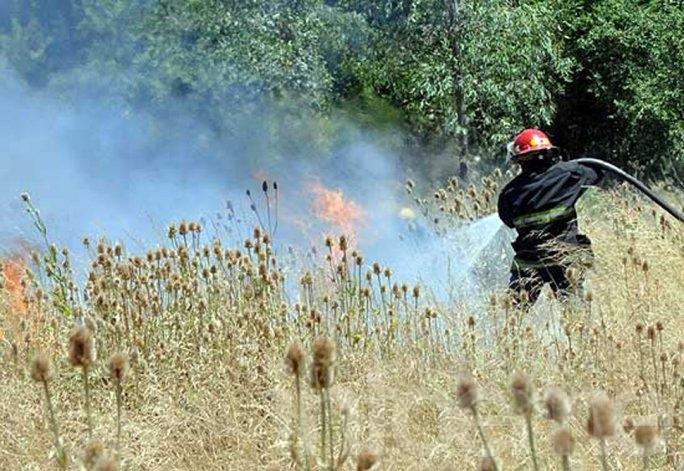 Se incendiaron dos terrenos, sólo pastos