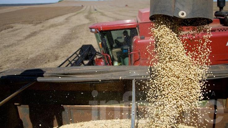 El Banco Nación levantó el cepo crediticio a productores sojeros