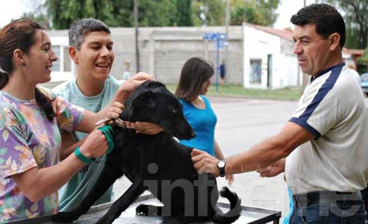 Vacunación antirrábica en el barrio Luján