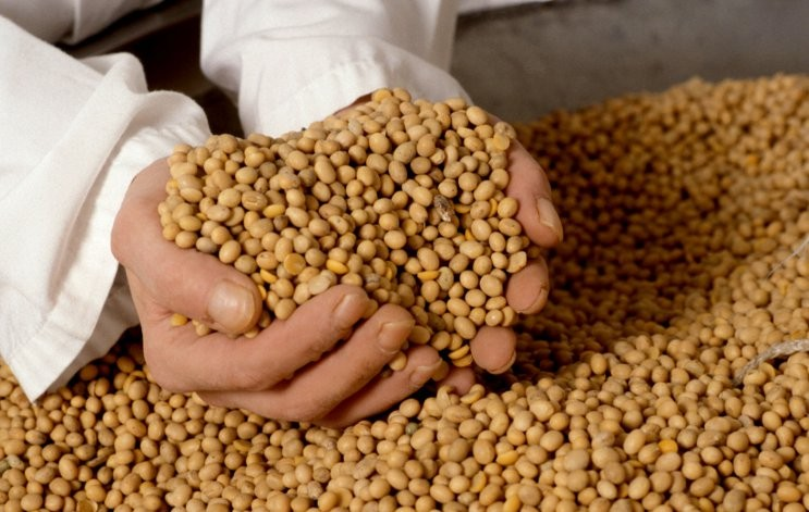 Formalizan la eliminación de retenciones y reducción de alícuota para la soja