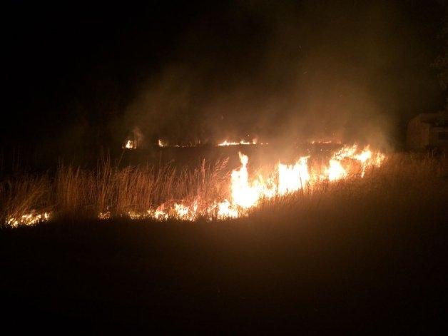 Siguen los incendios forestales: uno en el predio donde tocará el Indio