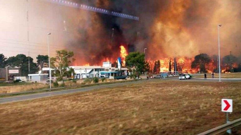 Incendio afecta los bosques de Valeria del Mar y Cariló